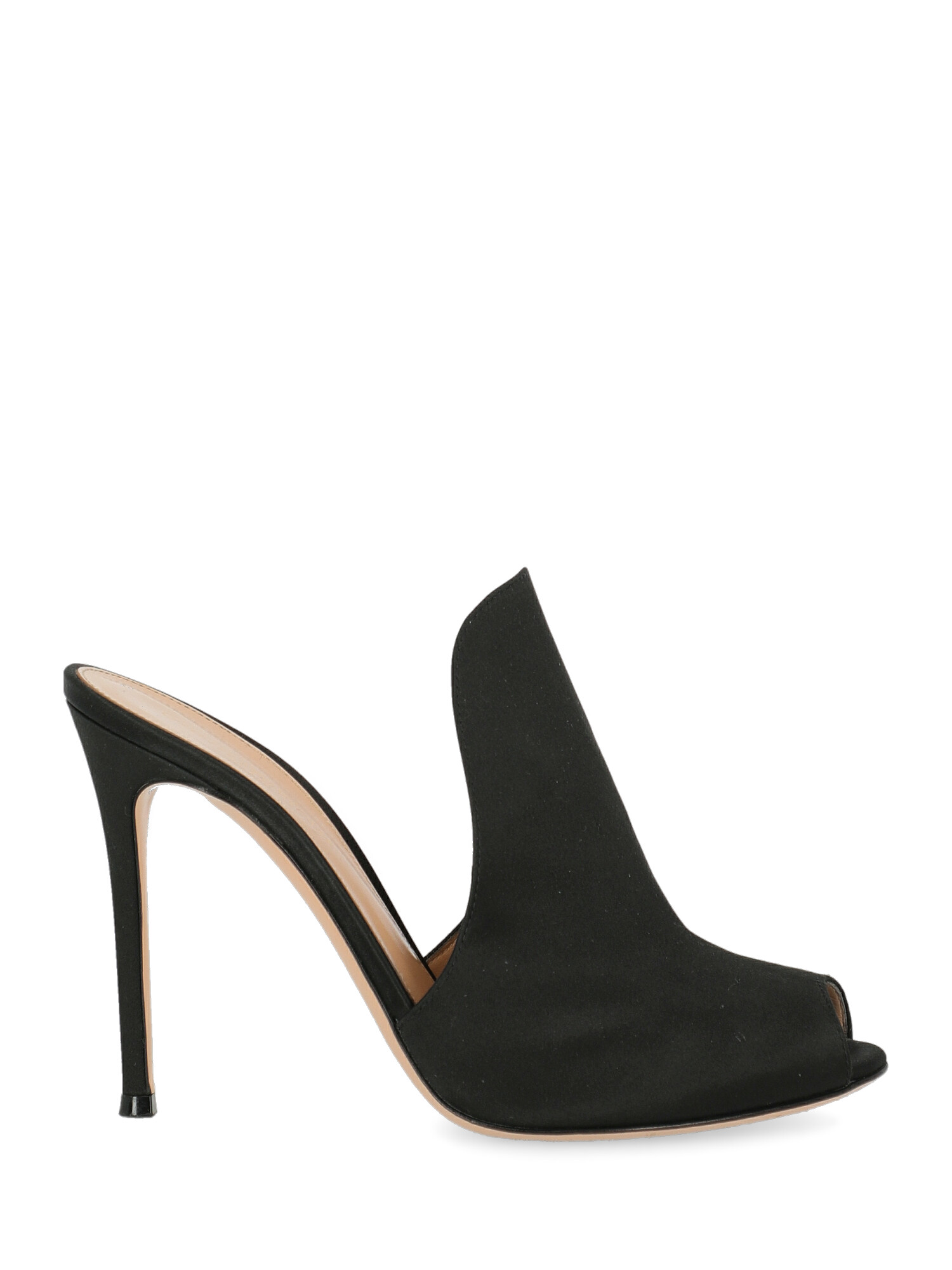 Pre-owned Gianvito Rossi Shoe In Black